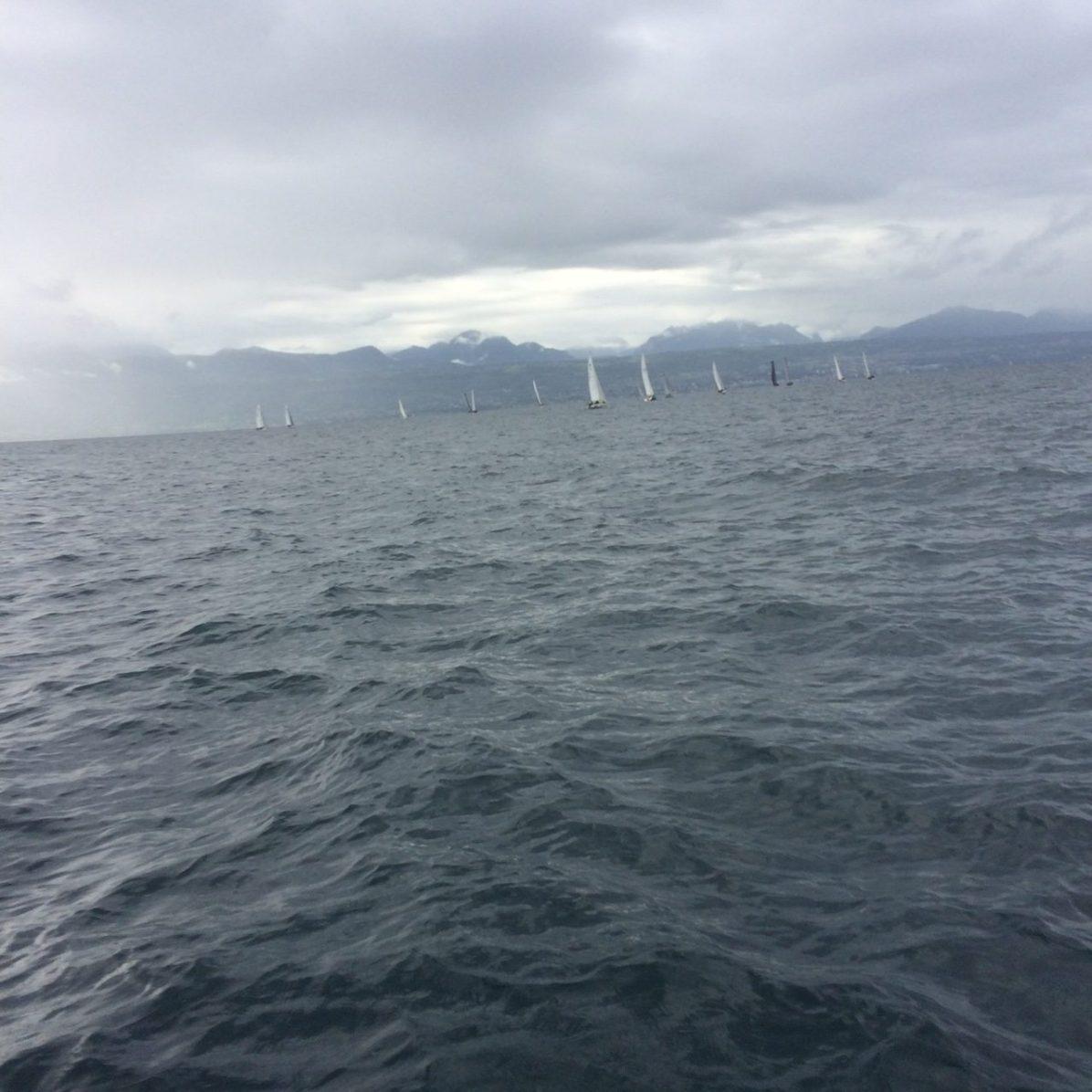 Flotte Ruban Bleu 2019