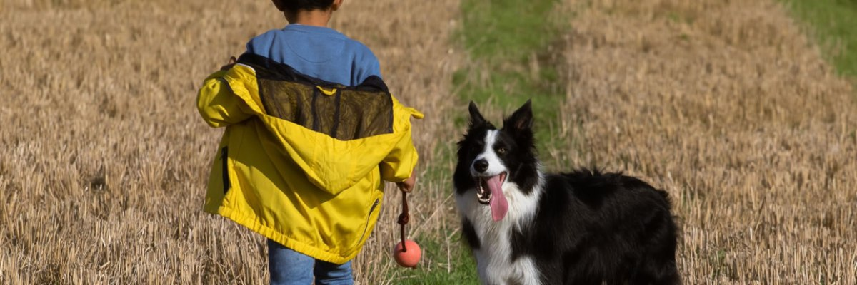 Stress in Parents of Children with Autism: Pets May Help