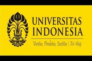 universitas di indonesia