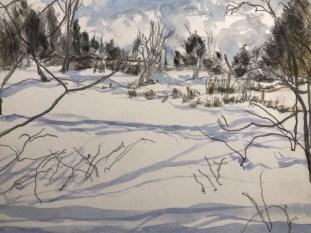Amy Ehrlich: Overgrown pasture