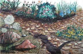 Deb Sigel: Along the Garden Walk: Ink & watercolor