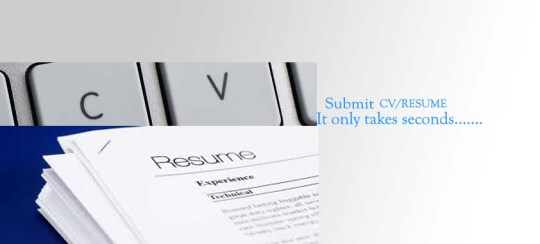 Fresher Sample Resume   CV Shapers Submit CV