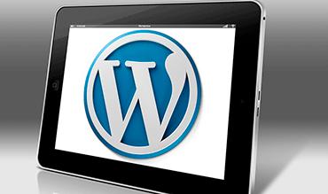 Sitios Web y Themes en Wordpress