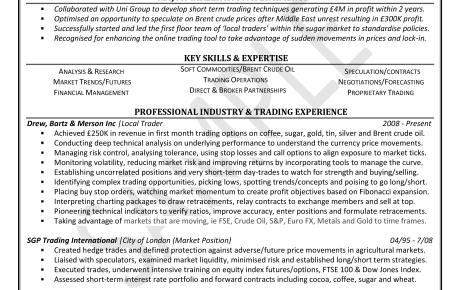 professional resume writing professional cv writing service