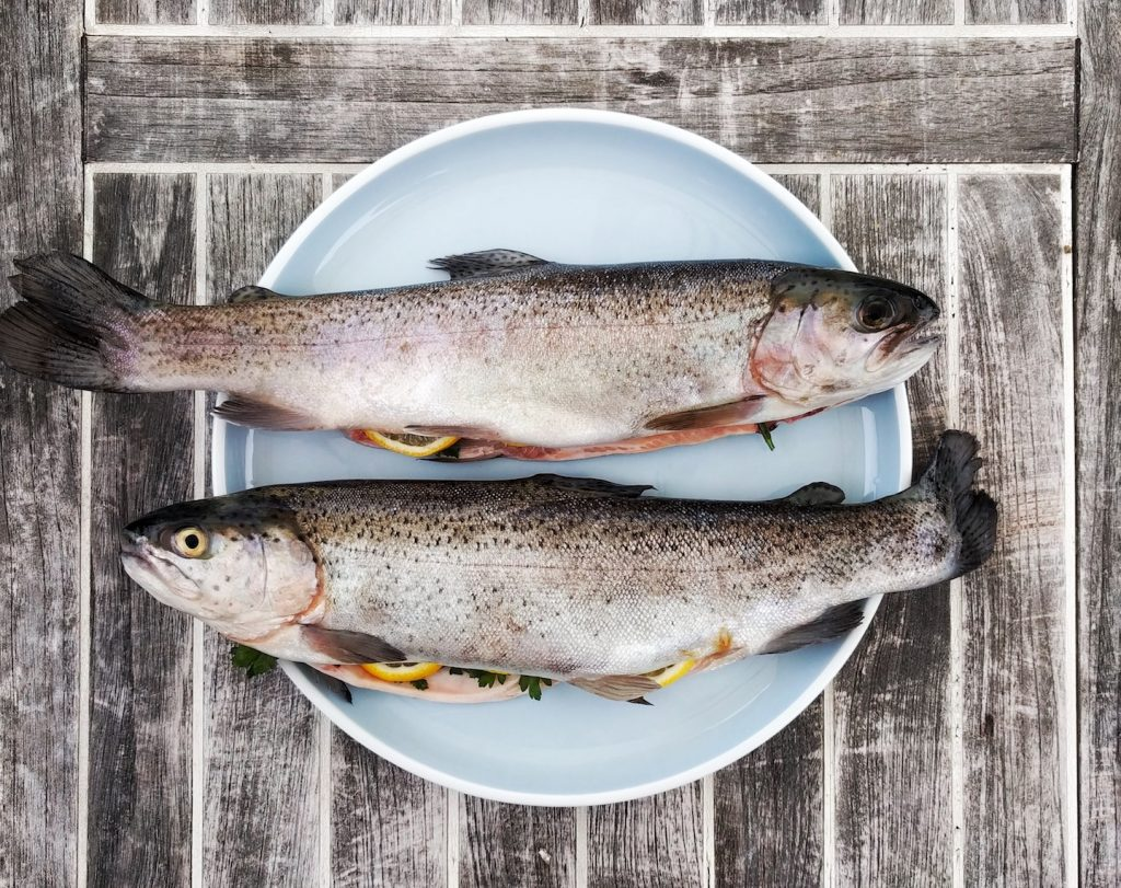 cooking and eating fresh trout