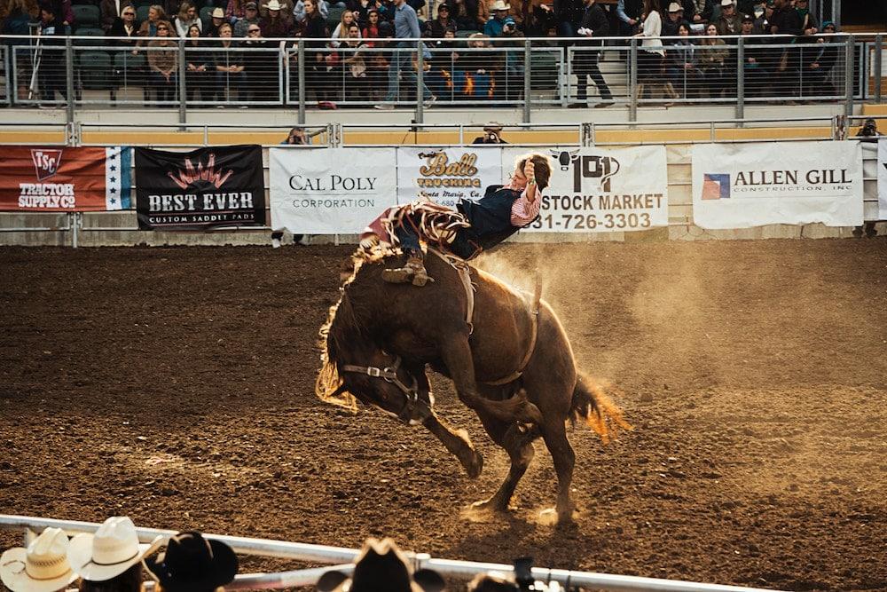 RVing at Rodeos