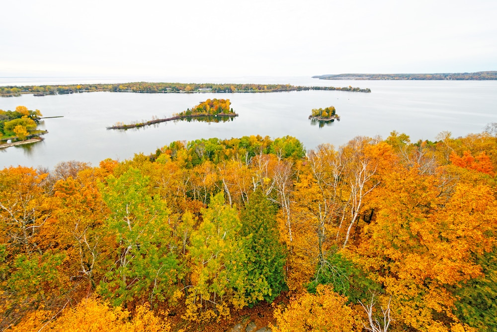 Beautiful fall trees in Potawatomi State Park in Door County Wisconsin
