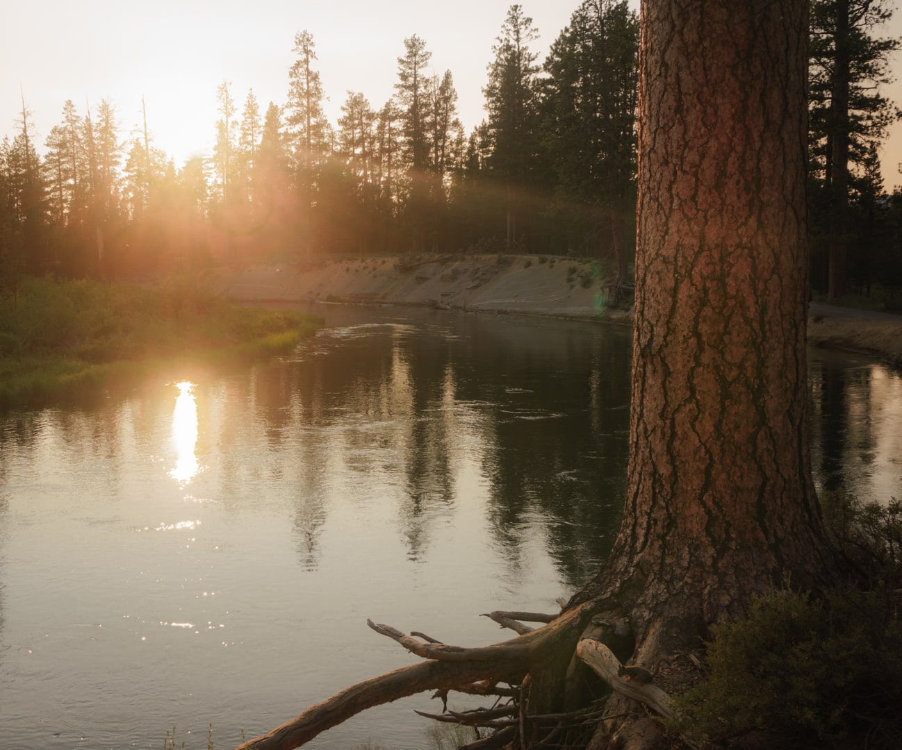 Sunset view from a USFS boondocking spot.