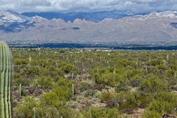 Photo Tripping America - Saguaro - Camping World