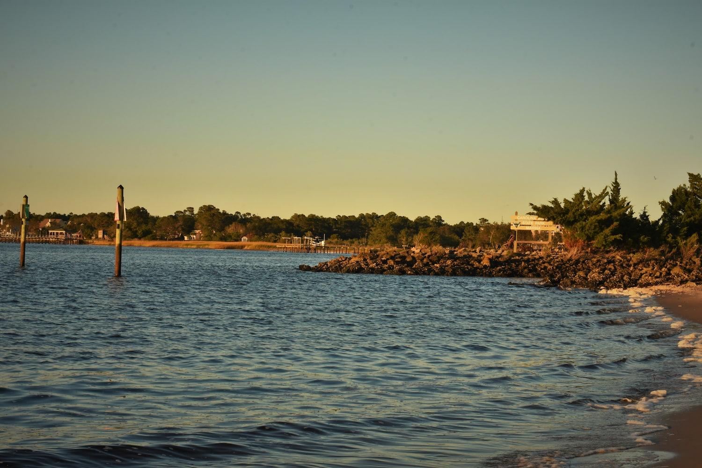 Shore at Carolina Beach state park.