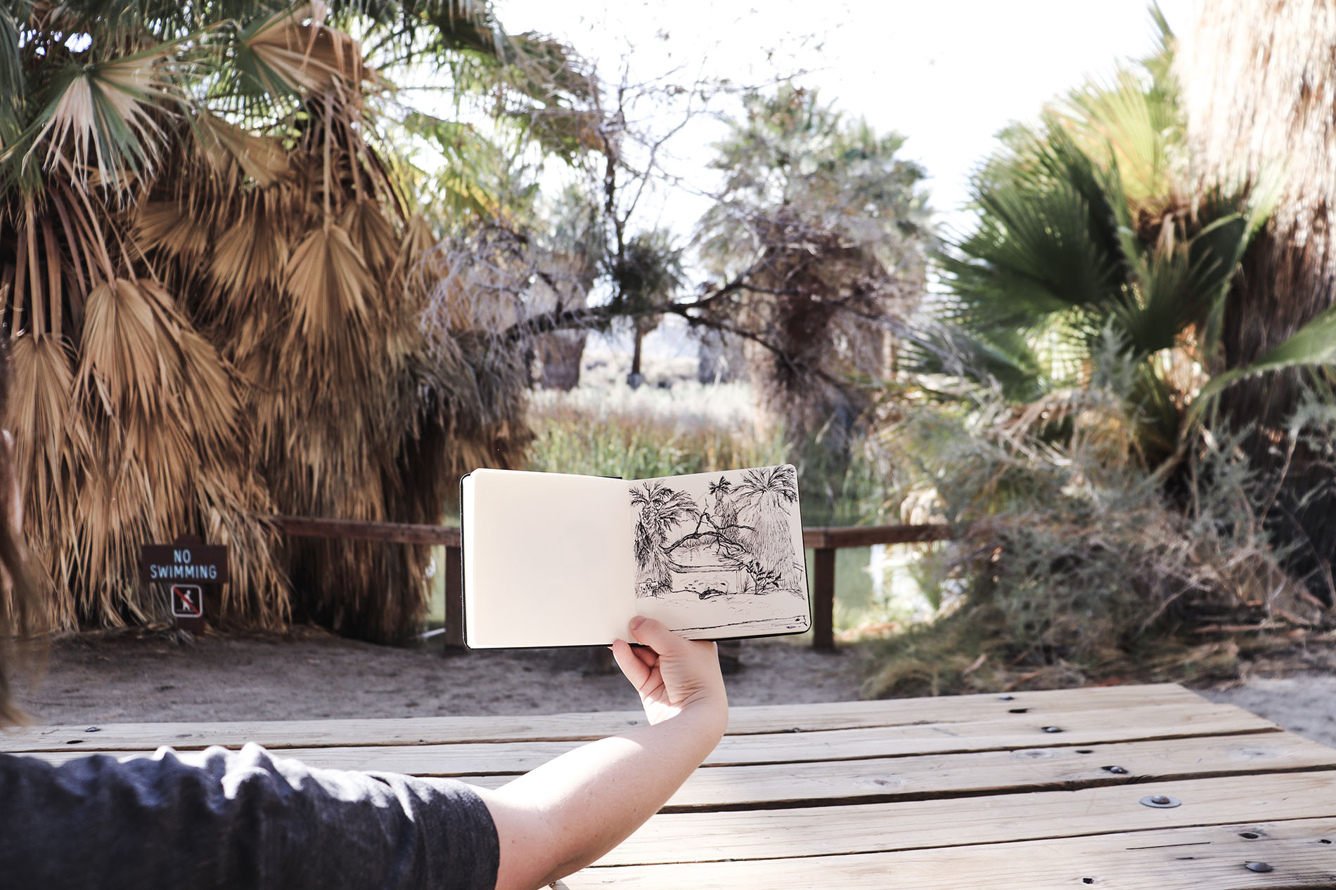 Sketching outside in Florida.