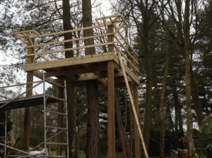 C Whyman Building Services Cannock - Tree House