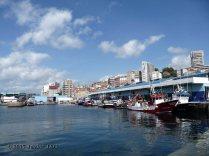 puerto de la ciudad de vigo (6)
