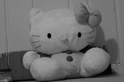 迪斯尼的大花貓