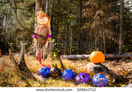stock-photo-a-young-boy-is-riding-on-a-tree-328843712