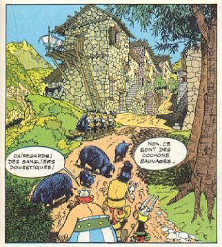 Obélix et les cochons corses