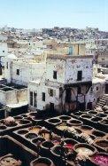 ma1999-tanneurs-fes-01