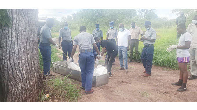 Dismembered Remains Of Tourist Who Slipped And Fell Into Victoria Falls Gorge Retrieved-iHarare
