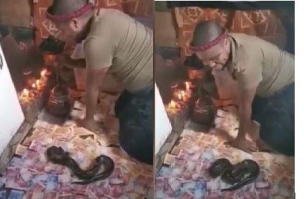 SA Man Praises Juju Snake