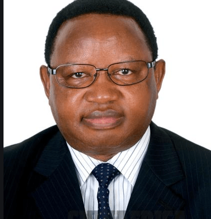 Willowgate Scandal Accused Minister Frederick Shava Makes A Come Back In ED's New Cabinet