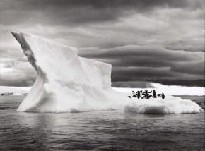 Icebergs near Paulet Island, Antarctica,2005