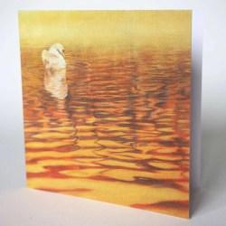 Dawn Swan Card