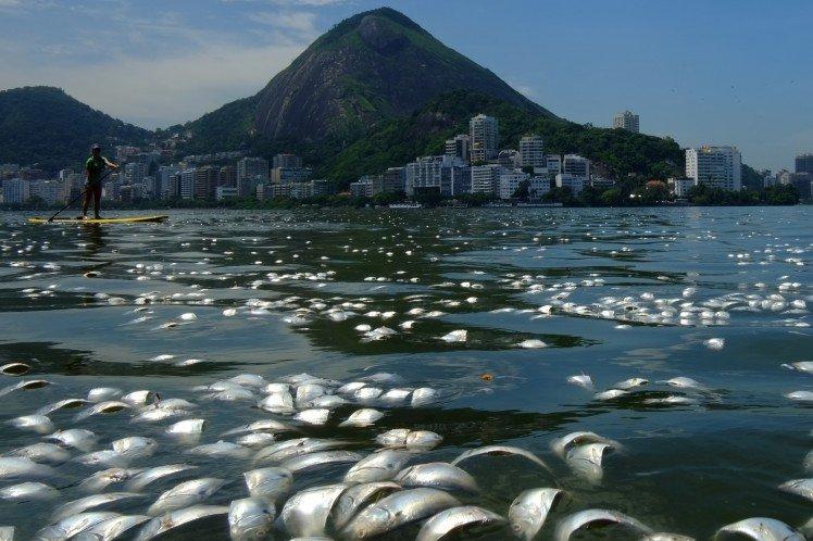 Coasts Overpopulation