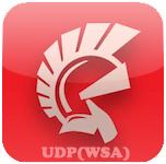 Простой UDP-чат на Delphi (WinSock)