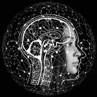 Personhood of autonomous systems