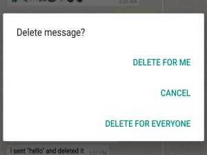 read deleted messages