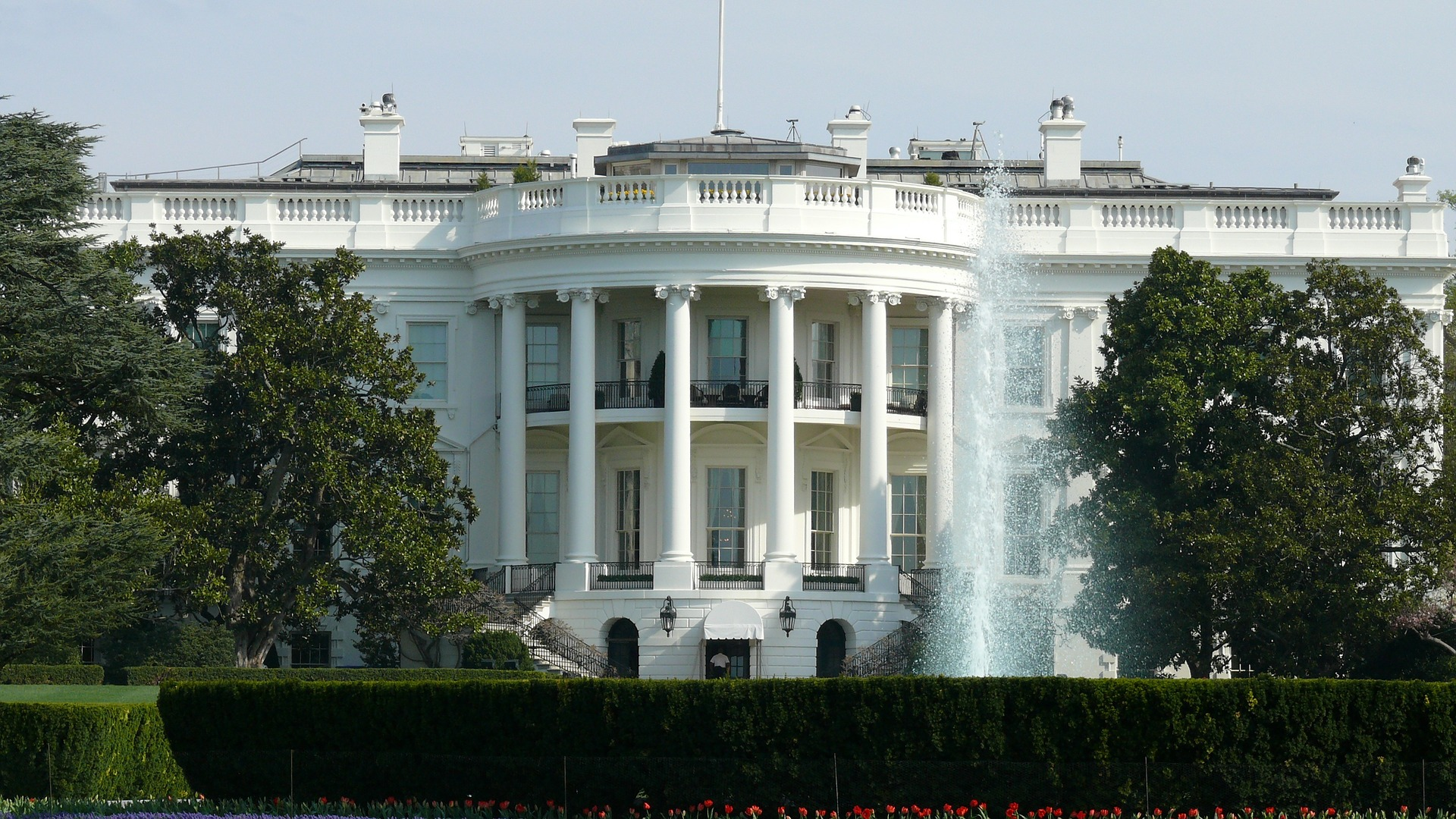 CLBR Backgrounder – Clinton v Trump on Technology