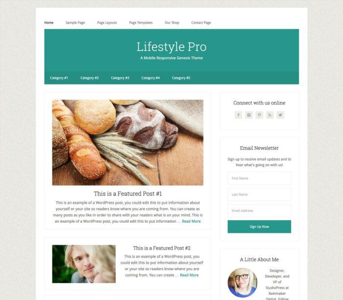 lifestyle pro theme review