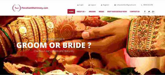 Web design of Matrimony agnecy