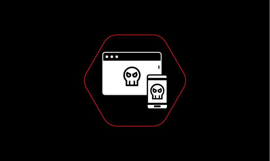 ravinwebhacking.jpg
