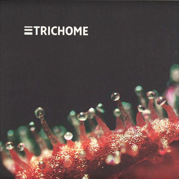 Trichome - Jorge Gamarra - vinilos de musica electronica