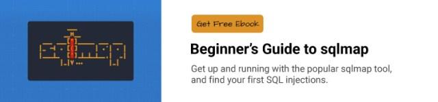 Beginner's Guide to sqlmap ebook