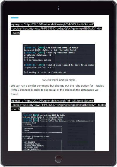 AppSec ebook example