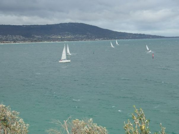 Sailboats taking advantage of the wind.