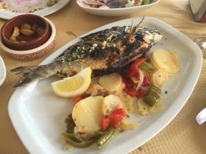 Sea bass.