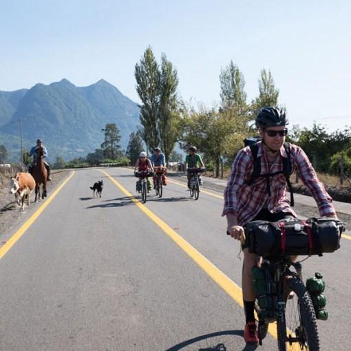 τσάντα, ποδηλάτου, τιμονιού, roll, blackburn, outpost, handlebar, αδιάβροχη,