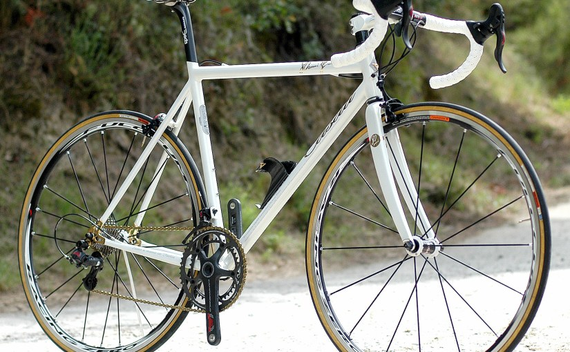Casati Campagnolo 80th Anniversary Limited Edition
