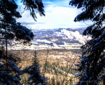 view Quesnel