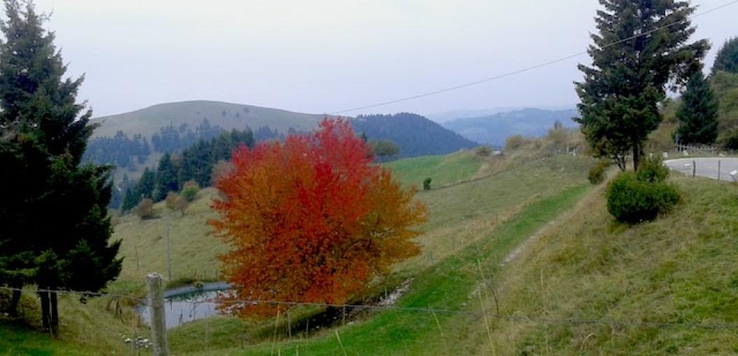monte-grappa-ottobre_monte-grappa-in-bici-da-corsa