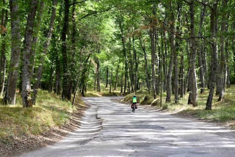 via-francigena-in-bicicletta_via-francigena-italia