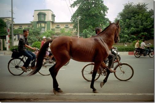 Vietnam_0521
