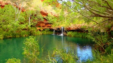 Fern Pool. Another oasis