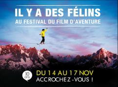 festivalfilmaventures
