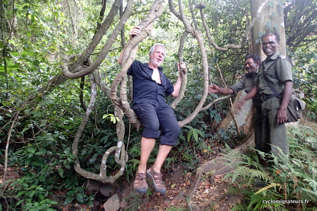 Joël ou Tarzan sur lianne