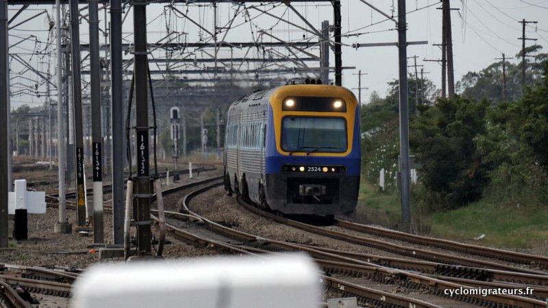 P1030582