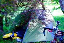 Camping inside Batumi Botanical Garden